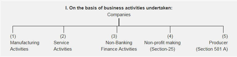 Classification of Companies
